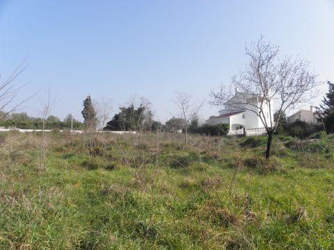 Građevinsko zemljište, Diklo, 1361m2