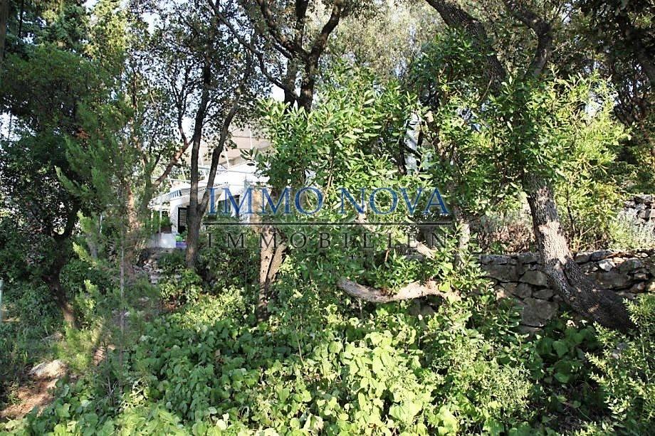 Predivan posjed 30m od mora, kod Trogira
