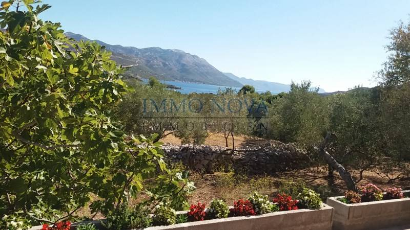Korcula - Detached house with 1.800m2 large cultivated garden