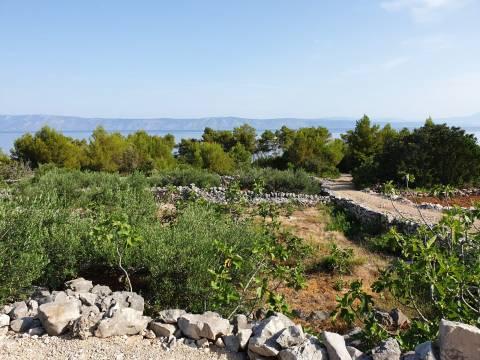 Zemljište s kamenom kućom 1. red, Hvar