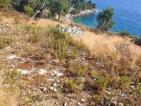 Poljoprivredno zemljište 1. red do mora