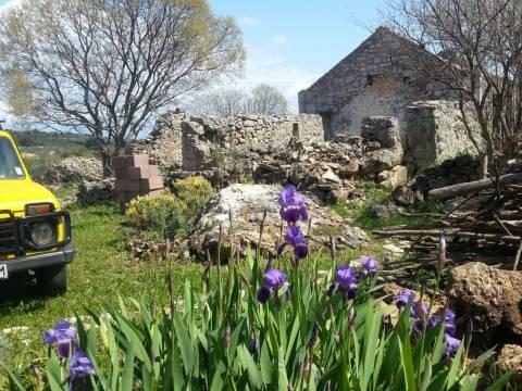 Hvar: 5 kamenih kuća za rekonstrukciju na zemljištu od 1300 m2, otvoren pogled na more