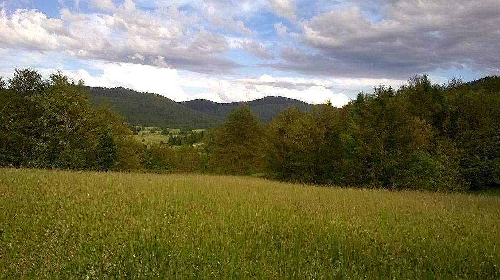 Gorski kotar, Ravna Gora poljoprivredno zemljište