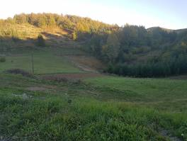 Gorski kotar, Ravna Gora zemljište