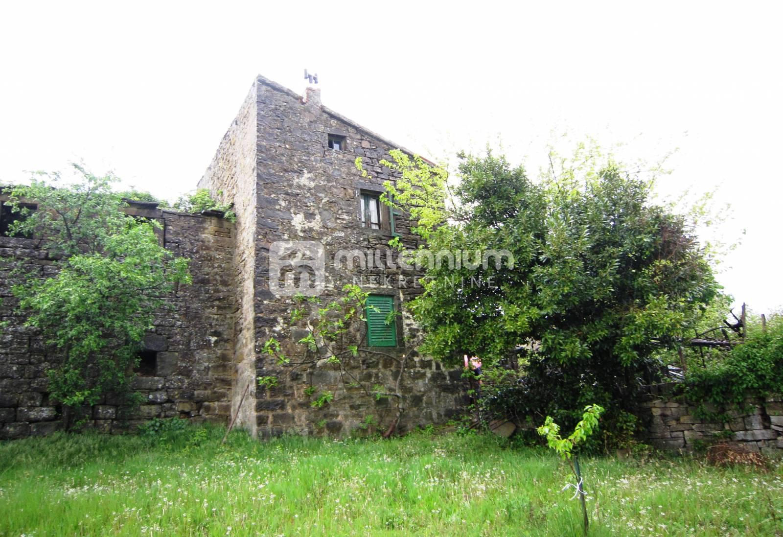 Istra, Momjan, starina s okućnicom i 8 hektara zemlje