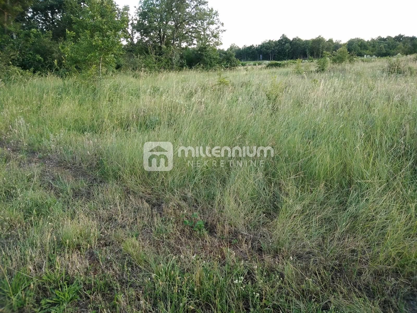 Istra, Buje, Kaldanija, poljoprivredno zemljište