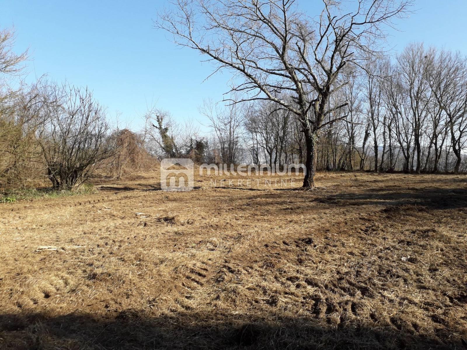 Istra, kuća i 10.518m2 zemljišta