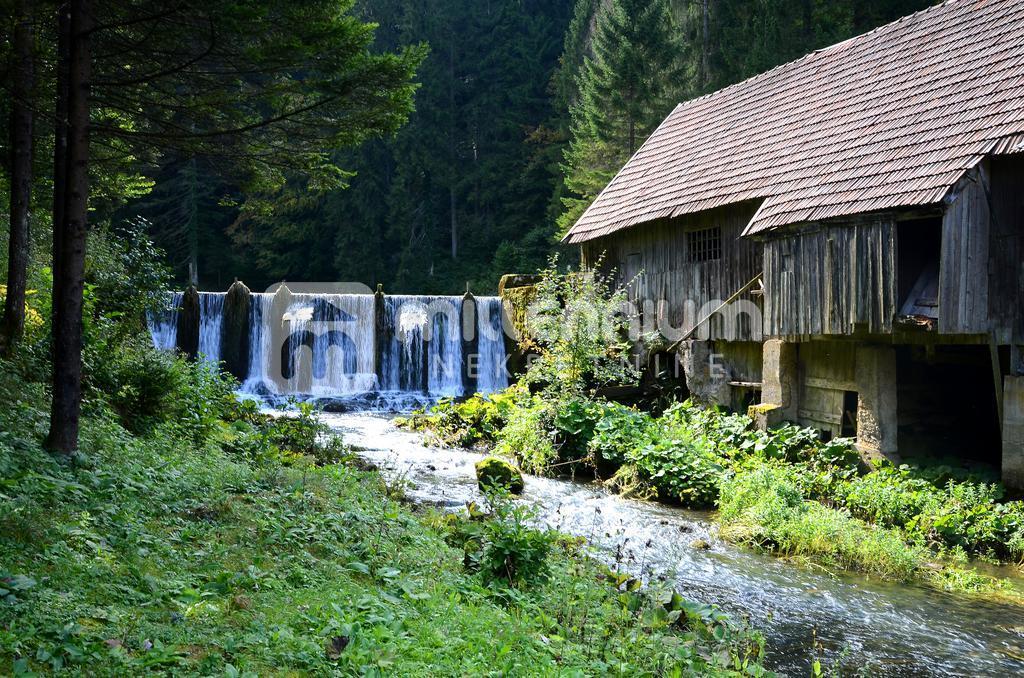 Gorski kotar, Vrbovsko, kuća s bazenom