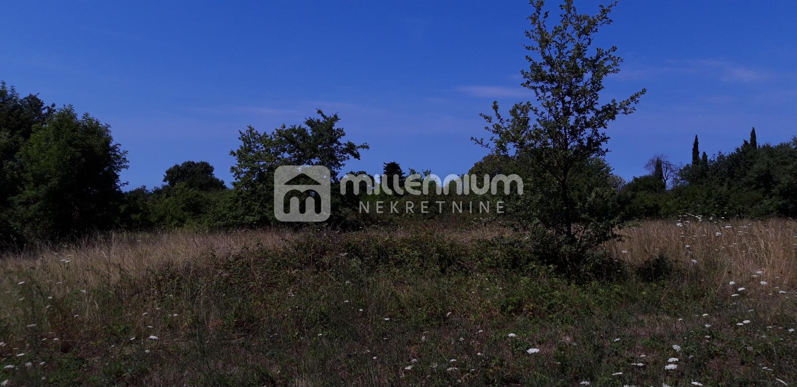 Istra, Višnjan, imanje s velikom okućnicom