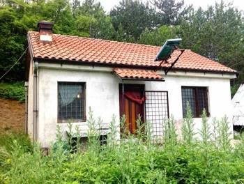 Istra, kućica sa 18.980m2 terena