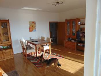 Šmrika, samostojeća kuća s 3 stana, 2 garaže i okućnicom