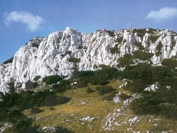 Jablanac, zemljište 10.500m2 uz more