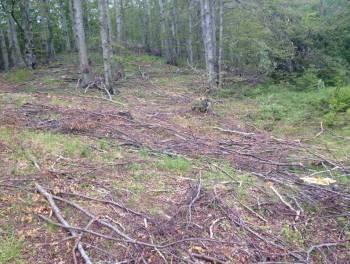 Gorski kotar, zemljište 14.740m2