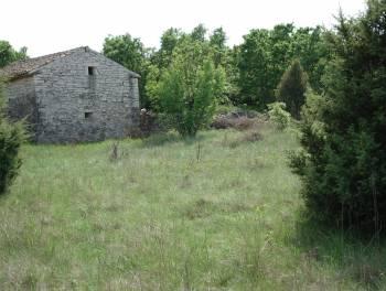 Istra, Rovinjsko selo, zemljište od 25.117m2