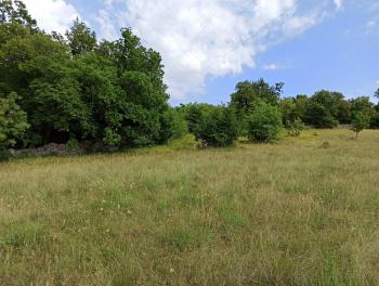 Krasica, zemljište od 7.776m2