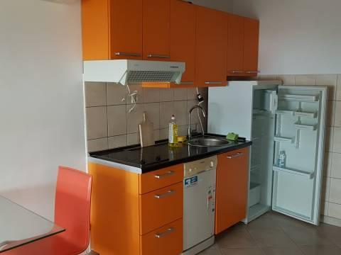 Barbat,2 studio apartmana u naravi,53m2