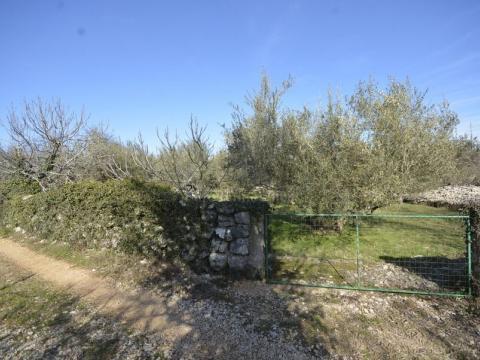 Prodaja aktraktivnog terena u mjestu Brzac površine 1334m2