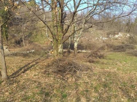 Gornja Drenova, zemljište, 1295 m2