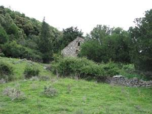 Terreno Supetarska Draga, Rab, 10.000m2