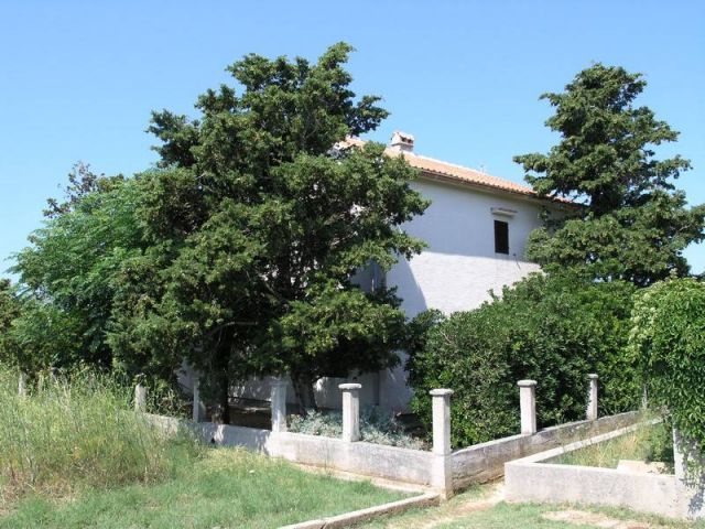 Rab, Barbat, kuća 200 m od mora