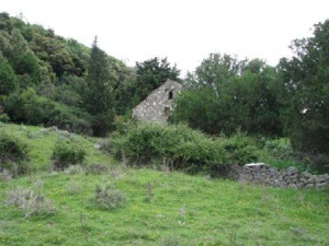 Land Supetarska Draga, Rab, 10.000m2