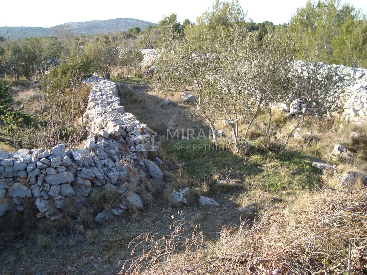 Properties Jezera Croatia, land, Mirakul Real Estate agency, ID - PJ - 269, Agricultural land 400 m away from the sea