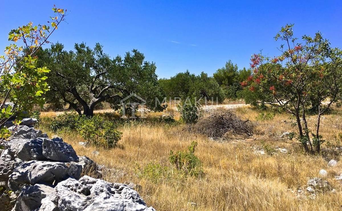 Rogoznica Ingatlan, Eladó földterület egy családi farmhoz, kilátással a tengerre, PR-274, Mirakul Ingatlanok 3