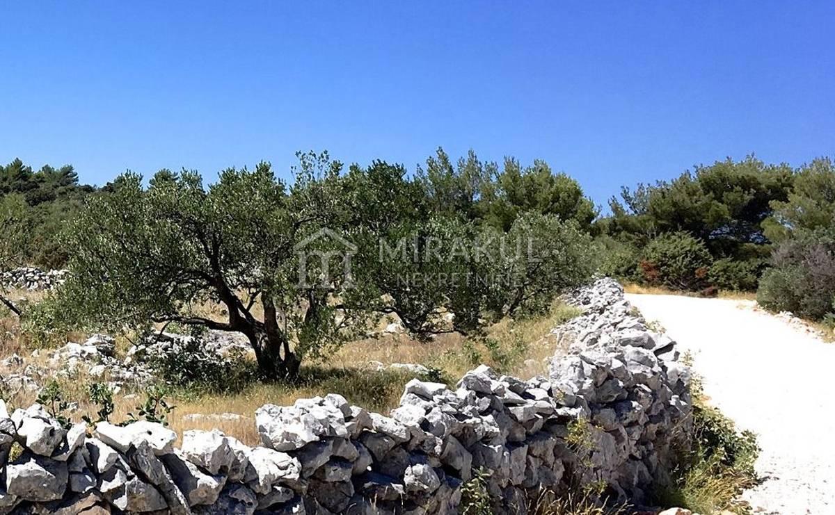 Rogoznica Ingatlan, Eladó földterület egy családi farmhoz, kilátással a tengerre, PR-274, Mirakul Ingatlanok 1