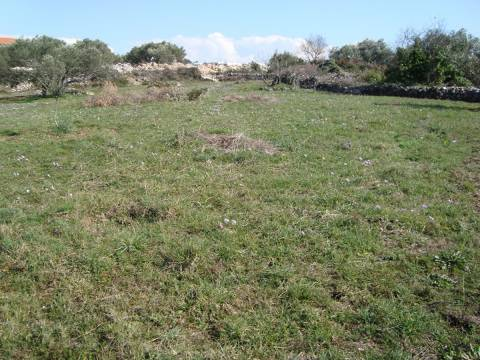 Properties Tisno Croatia, land, Mirakul Real Estate agency, ID - PT - 268, Agricultural land