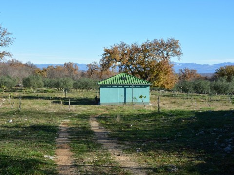 Zemljište Krk, 13.376m2
