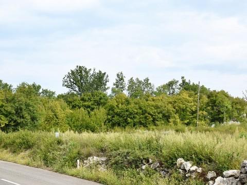 Blizu Krka, prodamo, stavbno zemljišče ob asfaltirani cesti, elektrika in voda v neposredni bližini!
