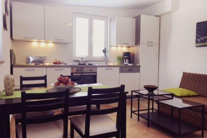 Širi centar, kuća sa apartmanima 384 m2, teren 784 m2