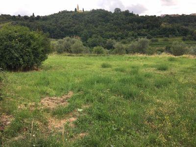Građevinsko zemljište u centru Momjana