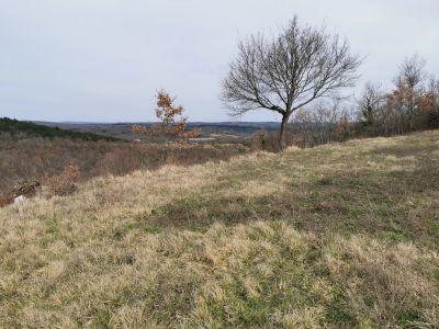Grožnjan- zemljište sa lijepim otvorenim pogledom