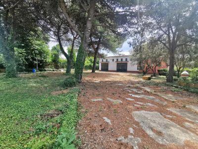 Umag, Savudrija, kuća sa velikom okućnicom