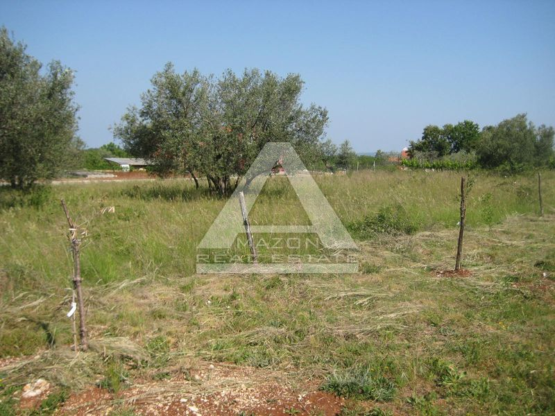 Građevinsko zemljište 3 km od graničnog prijelaza Plovanija