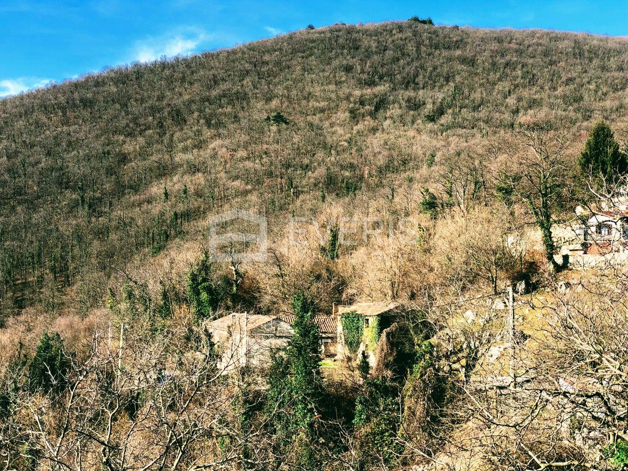 Veprinac, dvije kuće, dvojna kamena starina 270 m2