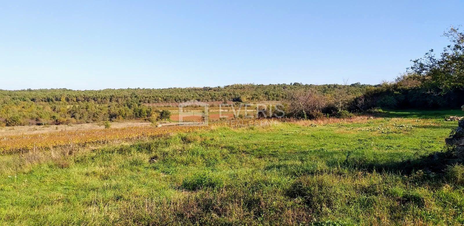 Višnjan, zemljište, 160598m2