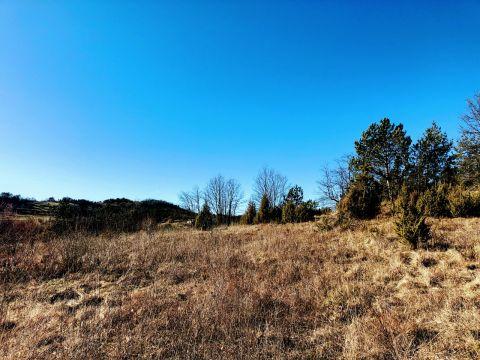 Istra, zemljište od 61.499 m2 s kamenom kućom