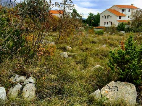 Seline, Starigrad - Paklenica, građevinsko zemljište, 800 m2