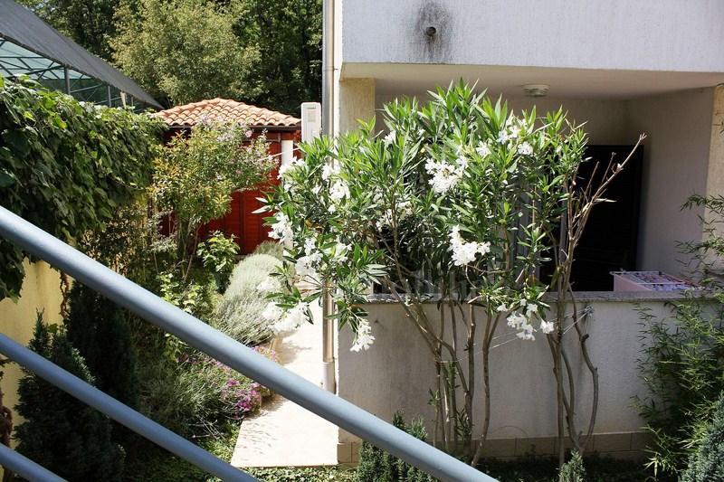 Appartamento Al Piano Terra Con Giardino A 200 M Dal Mare Appartamento