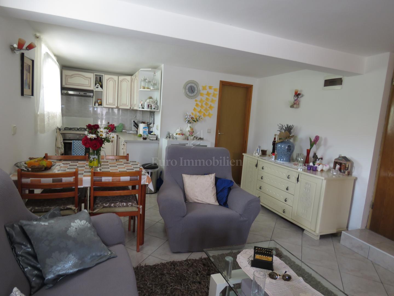 Obiteljska kuća s dva apartmana i prostranom okućnicom!