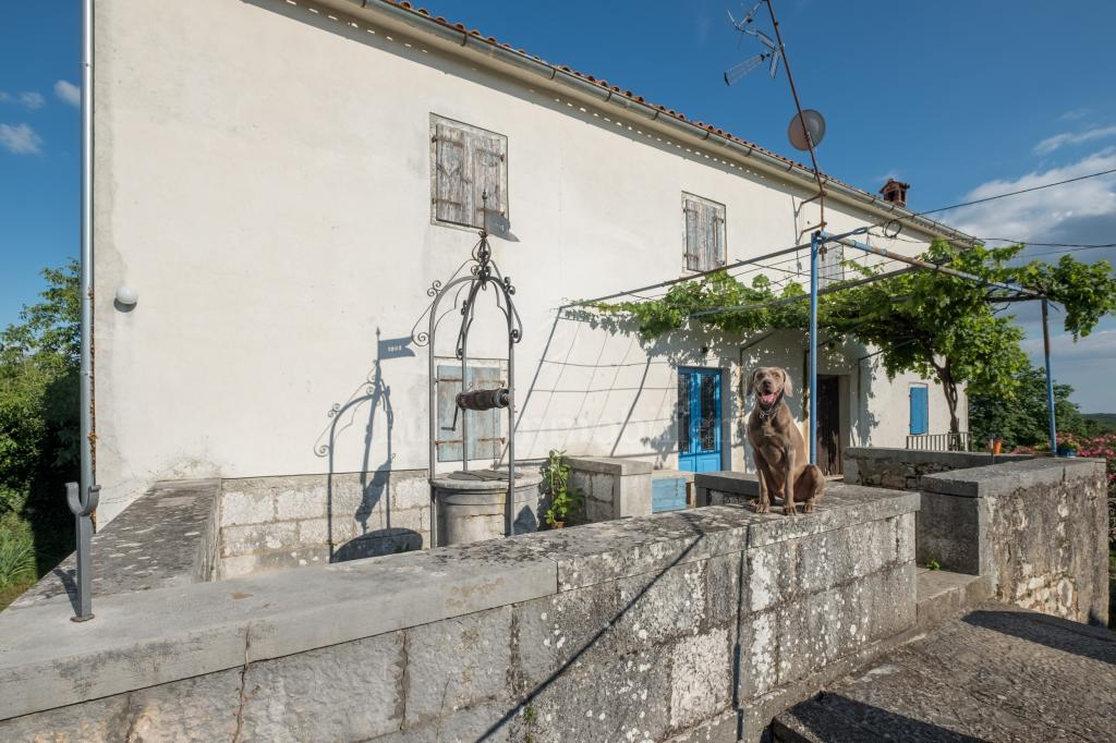Potential! A traditional Istrian estate with two stone houses!