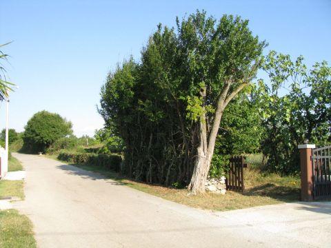 Građevinsko zemljište u Barbanu
