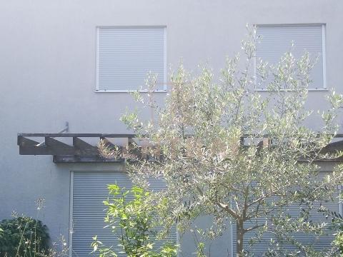 Novigrad, apartman s dvorištem, 80 m od mora