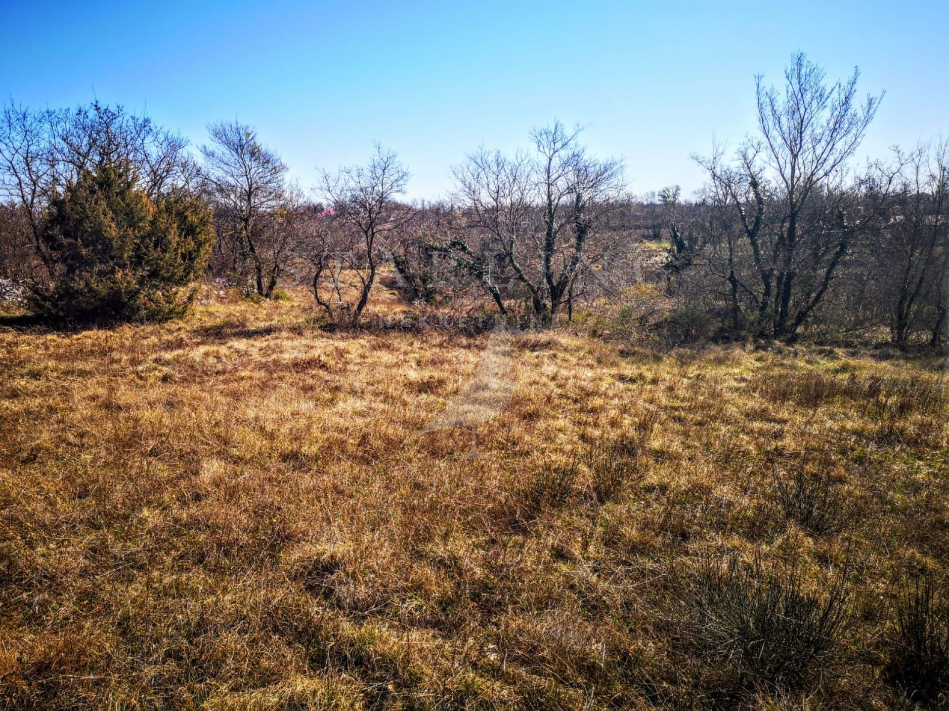 Prodaja, Građevinsko zemljište, Butkovići, Vodnjan
