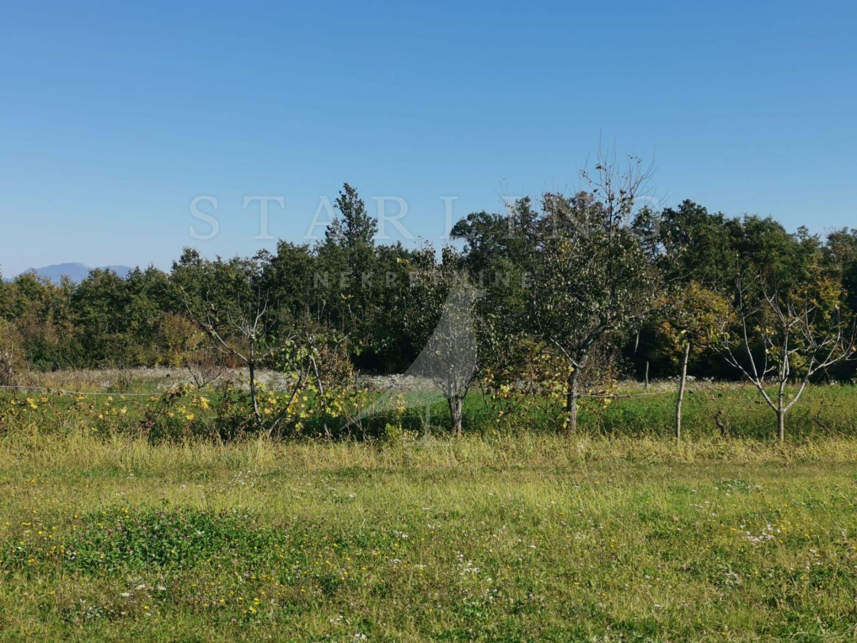 Prodaja, Građevinsko zemljište, Istra, Štinjan.