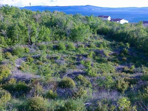 Land Crikvenica, 1.282m2