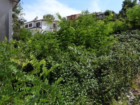 POBRI - građevinski teren 1329m2 za stambenu zgradu – stanove- apartmane  / obiteljsku kuću / villu /  za kuće za iznajmljivanje sa bazenom / kuću za odmor sa bazenom