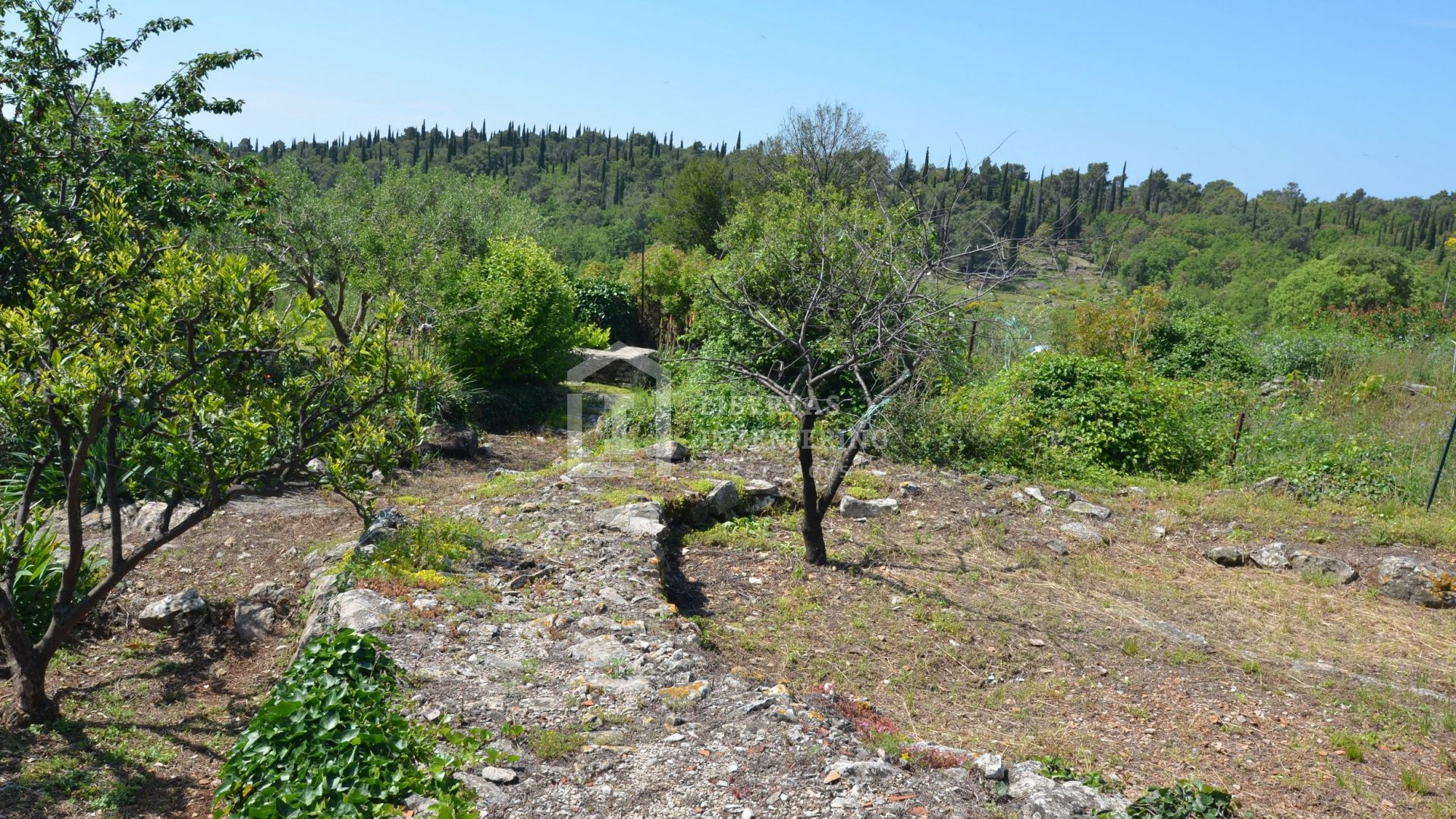 Stone house with plot of land/ OPPORTUNITY